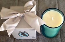DEBI LILLLY SOY CANDLE  PERFECT CAMEO CANDLE  9 OZ-  HYDRANGEA - IN BOX