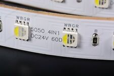 RGBW REALE 5m 300 LED SMD5050 RGB+W BIANCO FREDDO 24V STRIP STRISCIA