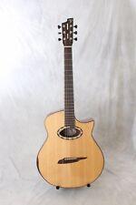 Beardsell (2012) Model 3DM Acoustic Guitar