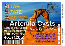120g Artemia Eggs / BRINE SHRIMP EGGS / A+ Grade / High Quality fish food