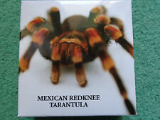 1.Dollar 2012 Niue Island - Rotknie Vogelspinne Mexican Redknee Tarantula