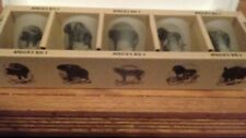 SOUTH AFRICAN ANIMAL SHOT GLASSES, THE BIG FIVE