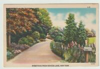 Unused Postcard Greetings from Kenoza Lake New York NY country Lane