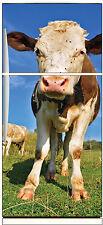 Stickers frigo électroménager déco cuisine Vache réf 591