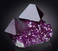 Alunit Kristalle auf Matrix aus Polen stellen neues Purpur wie Fluorit dar alun