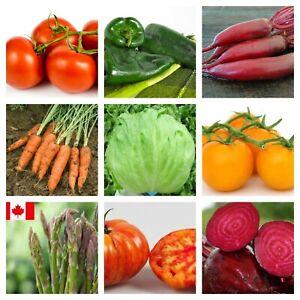 Vegetable Seeds Garden NON GMO Heirloom NON Hybrid Seeds From Canada Organic