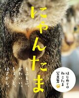 Picture Book NYAN-TAMA Cat Testicles Male Cats Furry Balls Japanese Photo Book