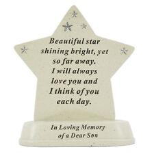 Special Son Baby Shining Star Graveside Memorial Grave Plaque Ornament