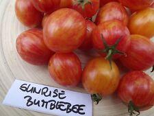 Tomate Sunrise Bumblebee - 10+ Samen - Knackig und Süßaromatisch!