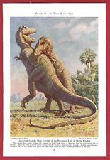 1942 Magazine Illustration by Charles Knight~Prehistoric TYRANNOSAURUS Dinosaur