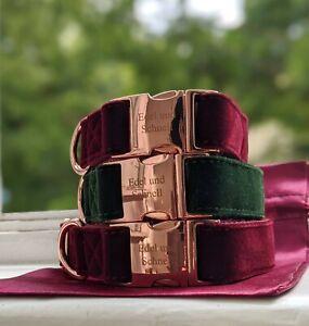 Hundehalsband, Halsband, Leine, Set, Samt, grün