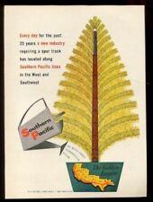 1955 Sur Pacific Ferrocarril Dorado Árbol Tren Vías Arte Vintage Estampado Ad