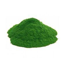 CLORELLA Polvere 500 g Detossificante Metalli Pesanti Ulcera Antinvecchiamento