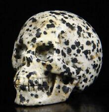 5.2cm Dalmation Jasper Carved Crystal Skull 98g