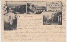 Ansichtskarte Hessen  Wiesbaden  Neroberg  Weinhandlung Gebrüder Krell  1898