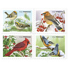 USPS New Songbirds in Snow Booklet of 20