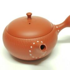 Japanese teapot Tokoname Kyusu Hand-crafted by Potter Hokuryu 10.8 fl oz (320ml)