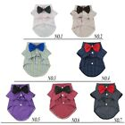 Fitwarm Bow Tie for Dog Wedding Clothes Polo Shirt Striped Pet Apparel S M XXXL