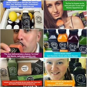 Cold Pressed Juice Cleanse Business