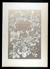 1886 seder-art nouveau-strawberry & Daisy-FRAISE & Marguerites I