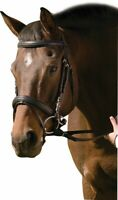 Henri de Rivel Padded Raised Dressage Bridle with Jawband Crank and Flash wit...