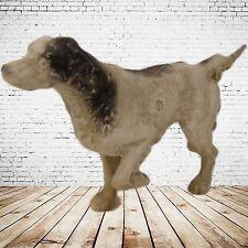 Spardose Hund Cocker Sammler Rarität Geschenk Vintage Deko Spielzeug Seltenes