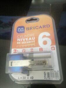 cylindre barillet serrure de porte haute sécurité BRICARD6 largeur30+40  4 clef