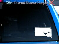 South Dakota Pheasant Hunting State Vinyl Decal Sticker / Color - HIGH QUALITY