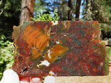 RFM - MARSTON RANCH Brecciated Jasper Agate Colorful Patterns Lapidary Rock Slab