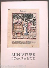MINIATURE LOMBARDE A cura di Miriam Bondioli Vister 1964 Arte Lombardia Manuale