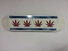 Hand Painted Skateboard - Wall Art - Chicago - Direct from the Artist