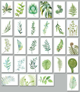 Watercolour Watercolor Leaves Fern Herb Botanical Leaf Monstera Canvas Print A3