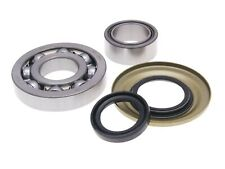 Vespa Cosa 1 200 VSR1T SKF Crankshaft Bearing Set