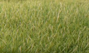 Woodland Scenics 7Mm Static Grass MediumGreen, #WS-FS622