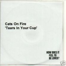 (247V) Cats On Fire, Tears in Your Cup - DJ CD