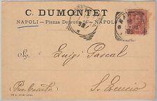 53813  - ITALIA REGNO - Storia Postale: CARTOLINA pubblicitaria da NAPOLI - 1899