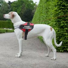 No Pull Dog Pet Harness Adjustable Control Vest Dogs Reflective ID Custom Patch