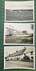 3 superb photographs 1936 St. Mawes Village road Cornwall fishing cottages pigs
