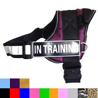 SERVICE DOG VEST Reflective Harness Removable Magic Patches IN TRAINING