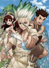Anime Dr. Stone Senku Ishigami Poster Group High Grade Glossy Laminated