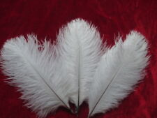 new white ostrich feather 10 PCS 15-20 cm / 6-8 inch DIY feather decoration
