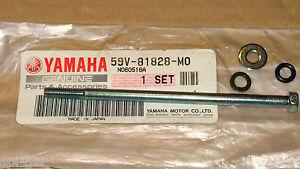 XV 250 Virago V-Star TTR YFM New Genuine Yamaha Starter Motor Bolt 59V-81828-M0
