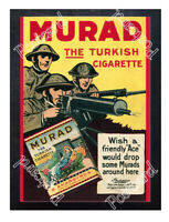 Historic Murad Cigarettes Advertising Postcard 2