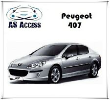 Pack LED habitacle Peugeot 407