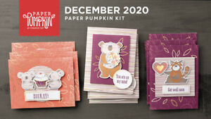 Stampin' Up Paper Pumpkin December 2020 Beary Comforting Kit