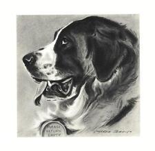 Saint Bernard - Morgan Dennis Dog Print - Matted