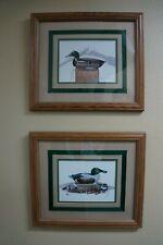Art ~ Wall Decor ~ Duck Decoy Pictures ~ Duck Hunting Art ~ Mallard ~ Shoveller