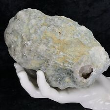 "New Listing6"" Large Solid Geode Uncut Lapidary Crystal Quartz Semi/Solid Kentucky Unopened"