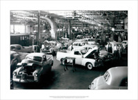 "HOLDEN UTES PRODUCTION LINE 1950 - ART PRINT- POSTER - A3 42 x 29 cm 16"" x 12"""