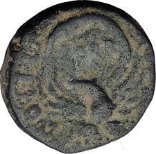 SEVERUS ALEXANDER 222AD Caesarea Maritima in Judea Ancient Roman Coin i64147